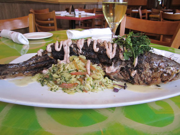 Hickory Grilled Whole Redfish With Orzo Pasta, Black Olive Aioli and Fennel Microherb Salad  at Red Fish Grill